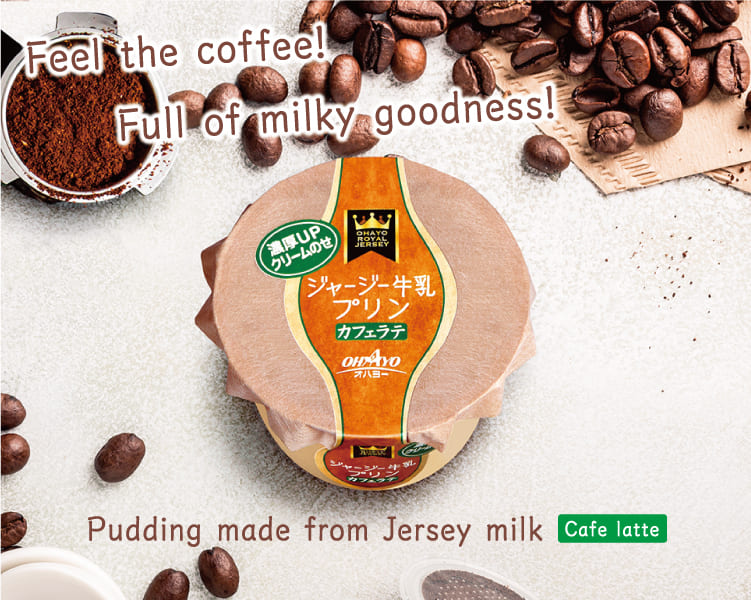 Café Latte Pudding (made from Jersey milk)
